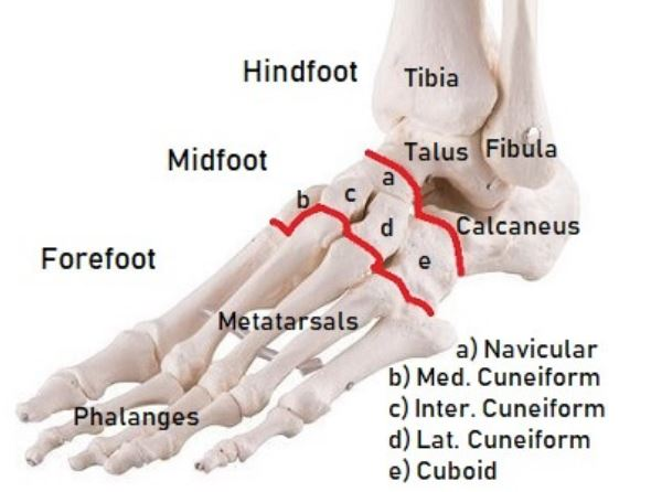 Reasons-Why-Feet-Hurt